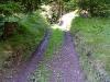 tratto strada silvo-pastorale di Quoilo dsc01375-600