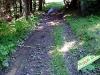 tratto strada silvo-pastorale di Quoilo dsc01377-600
