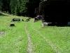 tratto strada silvo-pastorale di Quoilo dsc01380-600