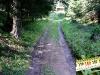 tratto strada silvo-pastorale di Quoilo dsc01383-600