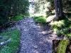 tratto strada silvo-pastorale di Quoilo dsc01409-600