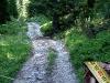 tratto strada silvo-pastorale di Quoilo dsc01423-600