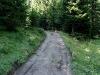 tratto strada silvo-pastorale di Quoilo dsc01426-600