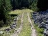 tratto strada silvo-pastorale di Quoilo dsc01433-600