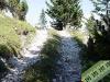 tratto strada silvo-pastorale di Quoilo dsc01435-600