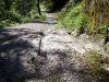 strada-romana-dsc00092-600