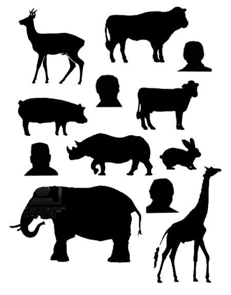 sagome-animali