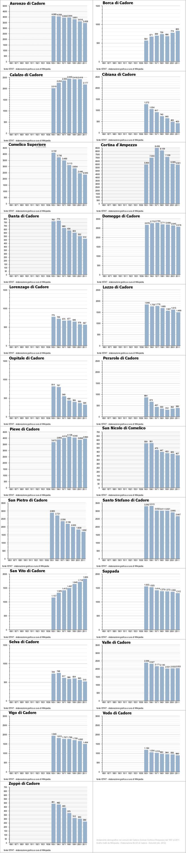 infografica andamento demografico in Cadore dal 1951 al 2011