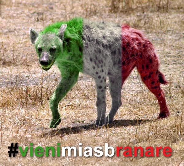 Bersani e PD su MPS: #vienimiasbranare