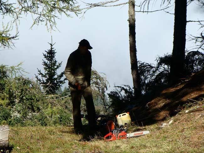 Parco della Memoria di Pian dei Buoi - Col Vidal - ottobre 2012 (02)