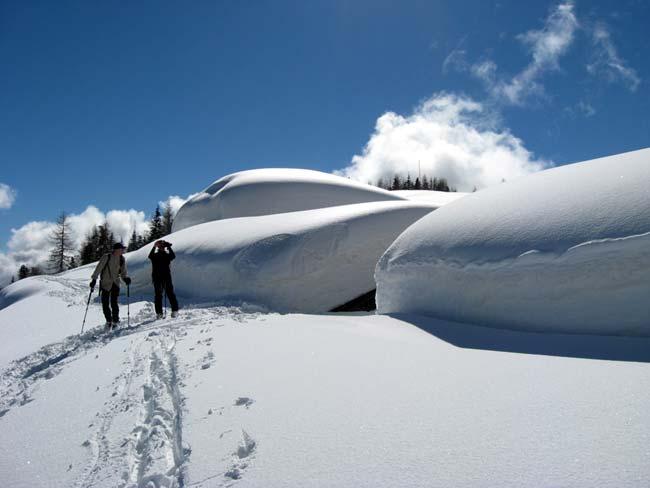 09 Stalloni della malga di Baion - Traversata da Deppo (Domegge) a Valdarin 23-02-2014 - Foto Eugenio Calligaro