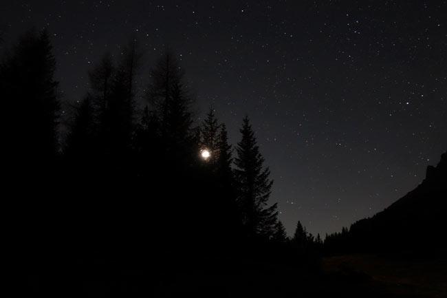 stelle-piandeibuoi-003-650