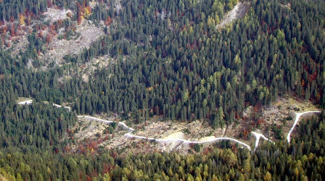 Strada della Val da Rin (tratto prossimo a Forzela Bassa)