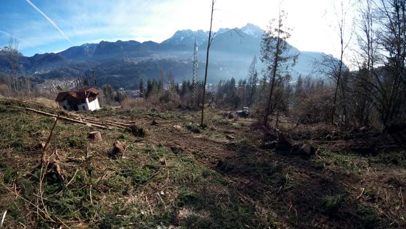 Riva: esbosco degli schianti da vento del 29 ottobre 2018; sotto qualcosa s'è fatto... :-)