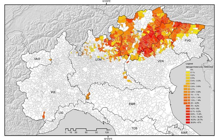 Mappa Geolab Firenze delle aree forestali danneggiate dalla tempesta Vaia