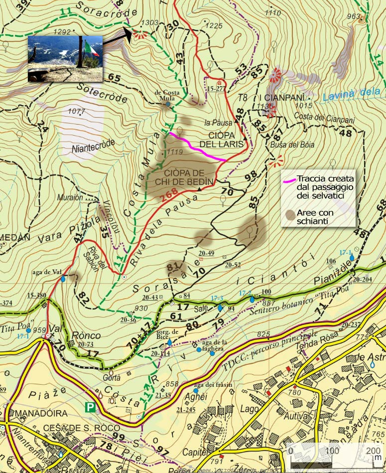 Estratto carta del Parco sentieristico di Lozzo di Cadore relativa a Costa Mula e Soracrode