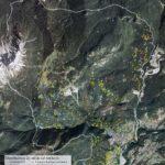 Carte tematiche del territorio di Lozzo di Cadore:: distribuzione tabiàs