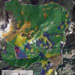 Carte tematiche del territorio di Lozzo di Cadore:: uso del suolo nel passato