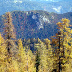 La Croda di Paterna dal sentiero 1262 tra Col Burgion e Forzela Bassa
