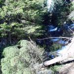 Imbocco della stradina che conduce alla postazione al momento del taglio della vegetazione che aveva colonizzato il tracciato