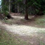 """Un primo tratto dell'area prossima al Pian e alla trincea """"de l Canon"""""""