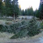 """""""Busa"""" ovest con alcune piante abbattute; di là si intravede la piazzola con le panchine e la colonnina della fontanella"""
