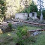 L'edificio durante le fasi di pulizia dalla vegetazione infestante (1#4)