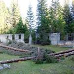 L'edificio durante le fasi di pulizia dalla vegetazione infestante (3#4)