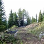 """Il tratto finale della strada ora ripulito dalla vegetazione; in fondo si intravede l'inizio della trincea aerea detta """"de le Pionbade"""""""