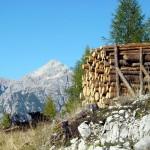 """""""Tasa de legne"""" (catasta di legna) sullo sfondo della Croda da Campo"""
