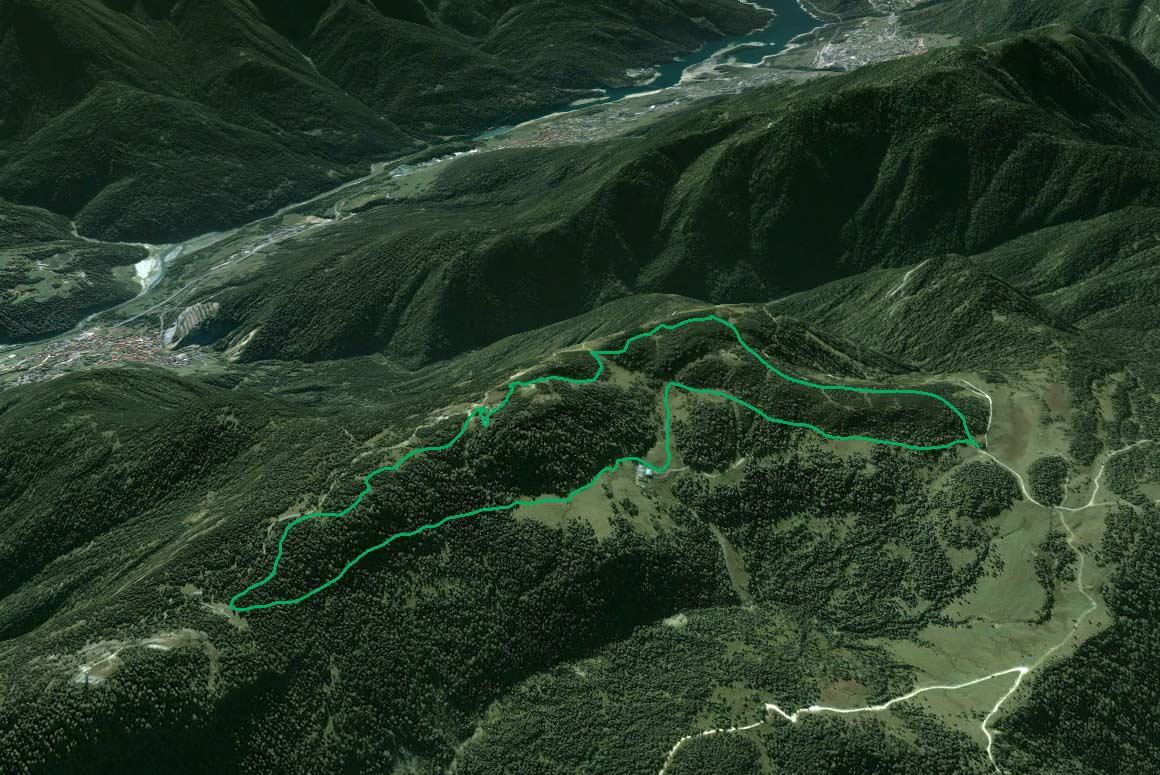 Il Parco della Memoria in 3D (da Google Earth): la dorsale dei Colli da Col Vidal a Soracrepa; in alto la Val Longiarin che si apre su Lozzo di Cadore