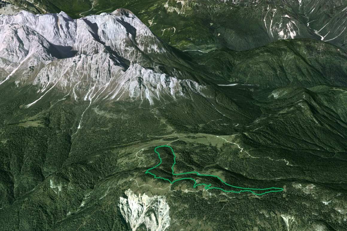 Il Parco della Memoria in 3D (da Google Earth): visione con le Marmarole sullo sfondo (Cimon del Froppa, Croda di Somprade, Croda Bianca-Ciarìdo)