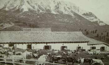 Sovergna con la Casera delle Armente, Pian dei Buoi e la Croda di S. Lorenzo (m. 2502) (Foto Gerardini)